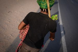 A Sufi Pilgrim and his parrot walking to a shrine in Rajasthan.