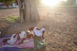 Sufi pilgrims in Rajasthan resting under a tree while monkeys play nearby.