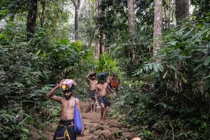 Pilgrims in the jungles of the Western Ghat Mountains, walking to the forest shrine of the Hindu god Ayyappa.