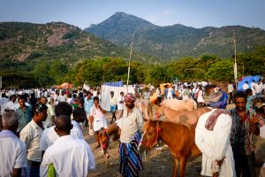 Pilgrims at the base of Arunachala Mountain.