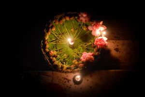 Offerings of lotus flowers for the mother goddess.