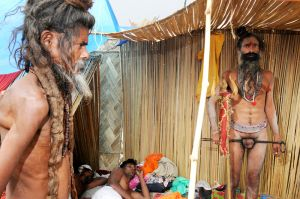 A Sadhu Feels No Pain